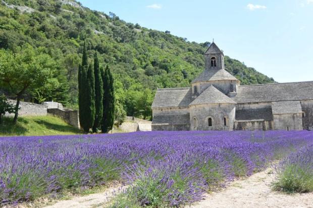 ラベンダーが咲き誇る南仏・セナンク修道院